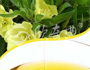 月見草油(Evening primrose oil)